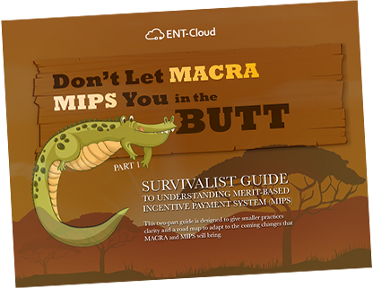 ENT_macra_mips_guide