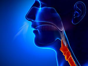 Swallowing Disorders Goshen NY