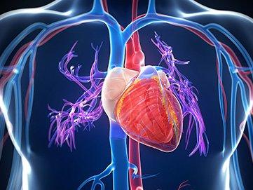 Cardiac Imaging Heart and Vascular Clinic DE