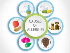 Nasal Allergies Goshen NY